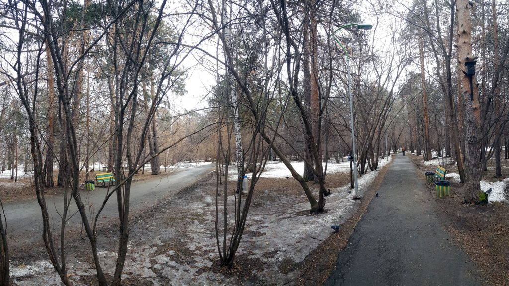 Участок густо покрыт деревьями. Зачем сюда впихивать круглую площадку?