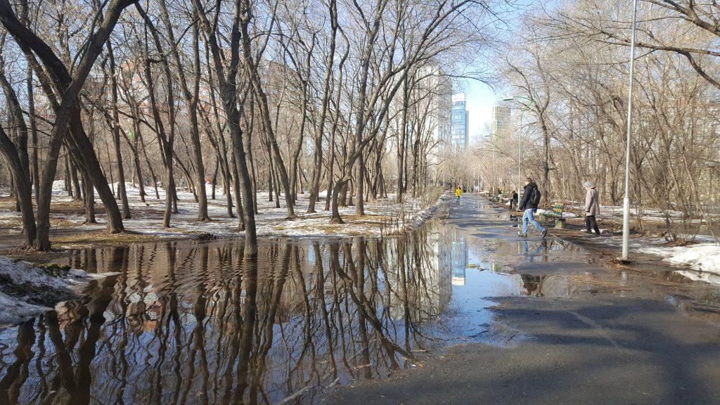 Дорожка частично затоплена талой водой.