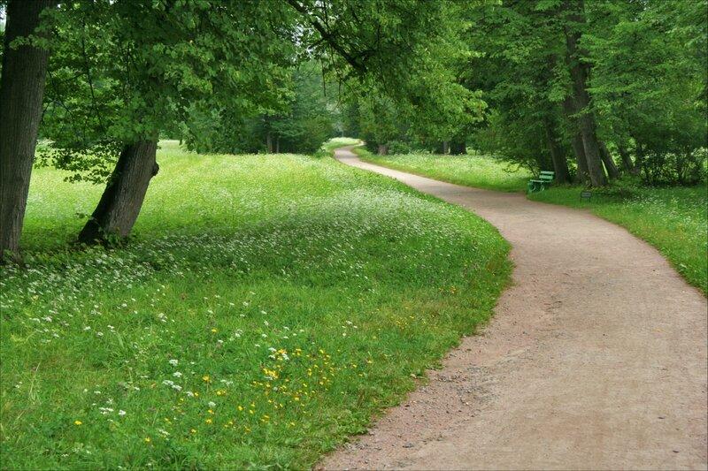 Мы считаем, что песчаные дорожки не должны иметь бортового камня. Таким образом они будут плавно переходить в газоны, имитируя естественно сложившиеся тропы.