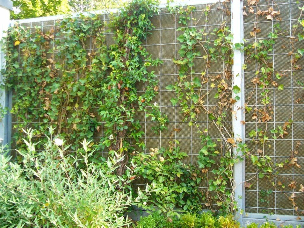Шумозащитный экран с вертикальным озеленением может решить эту проблему.