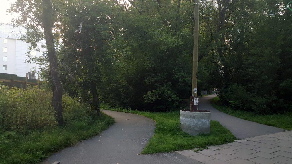 """Вид с уровня земли. Две дорожки расходятся от входа со стороны КРК """"Уралец""""."""