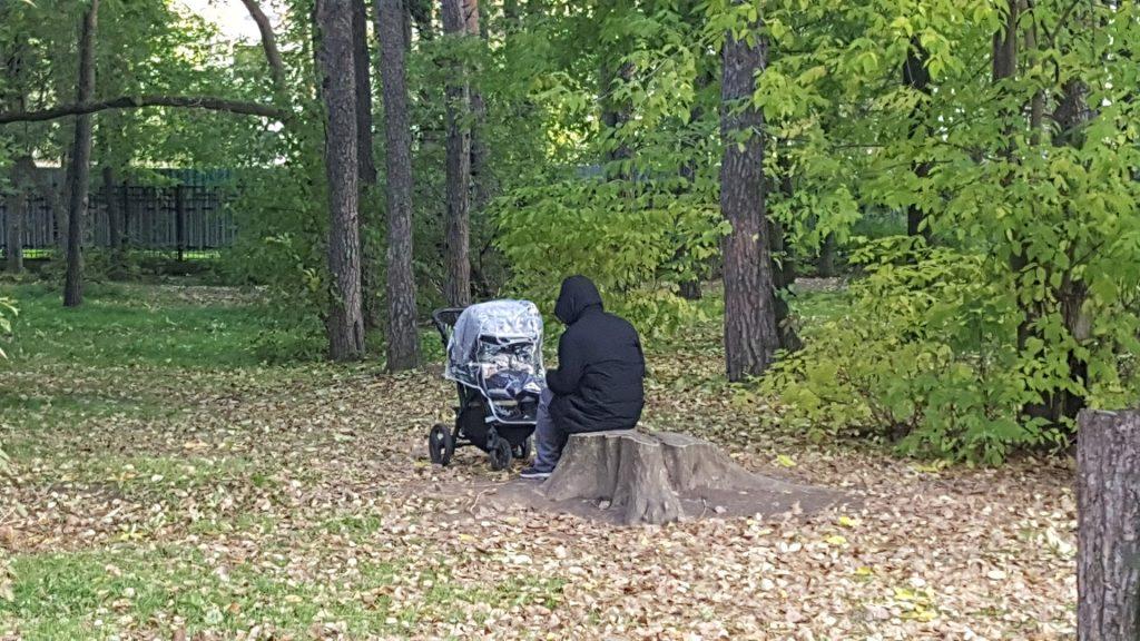 Люди хотят иметь возможность присесть в разных точках парка. Сегодня этой возможности нет и многие вынуждены сидеть на пнях.