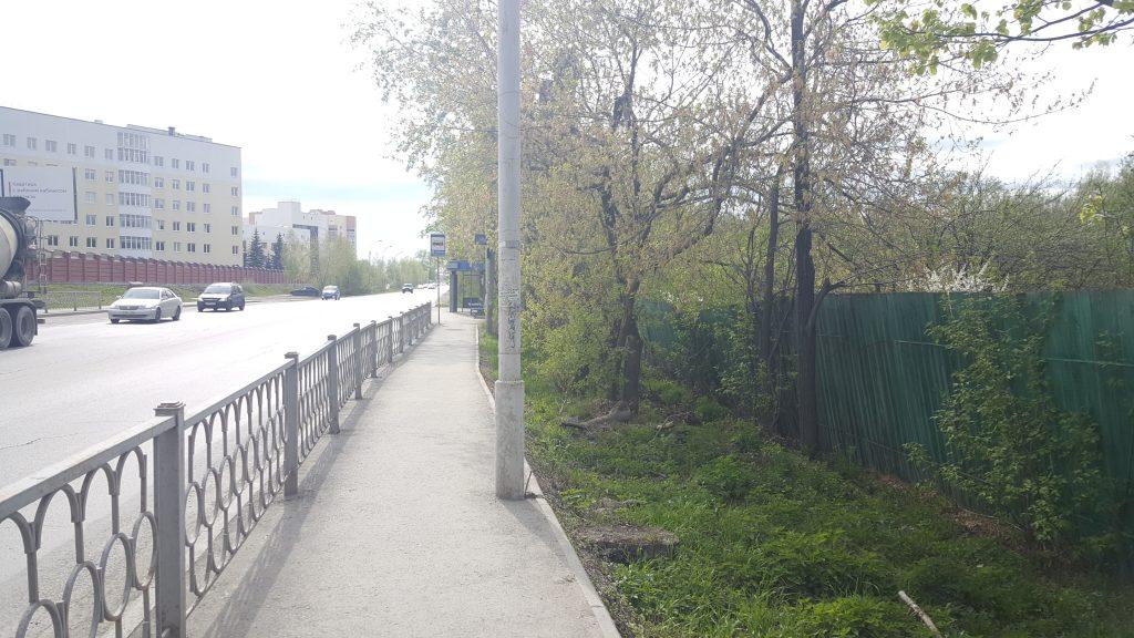 Не самый плохой из тротуаров вдоль Светлореченской.